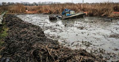 Rendőrkézen a szigetszentmiklósi olajszennyezés gyanúsítottja