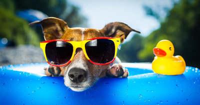 30 fok felett lesz ma a hőmérséklet, várnak a strandok!