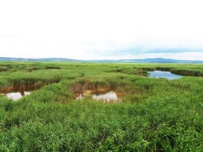 Ezen a tavunkon sétahajóval juthatunk el az úszó szigetekre és a madárrezervátumba