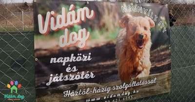 Ingyenes nyílt nap a Vidám dog játszótéren!
