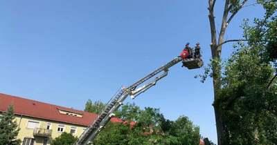 Ezért vonultak a tűzoltók a Komárom-Esztergom megyei rendőrkapitánysághoz