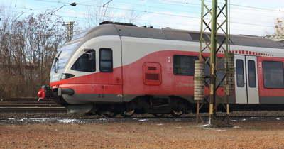 Szarvast gázolt a vonat Komáromnál