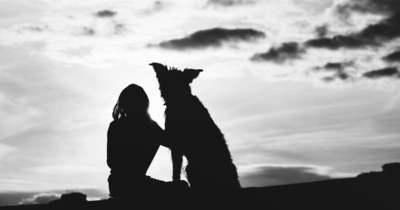 Tragédia: fuldokló kutyája után ugrott egy férfi, nem élte túl