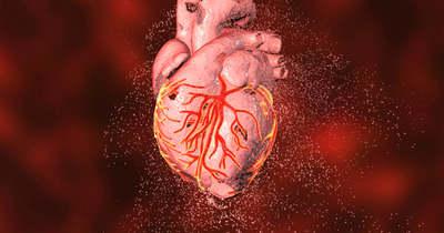 Kapcsolat lehet a Pfizer és a Moderna oltások, valamint egy ritka szívbetegség között