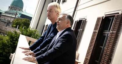 Geert Wilders elnézést kért a magyaroktól Rutte kijelentései miatt
