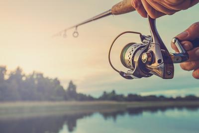 A GVH horgára akadt a horgászati cikkek egyik legnagyobb hazai nagykereskedője