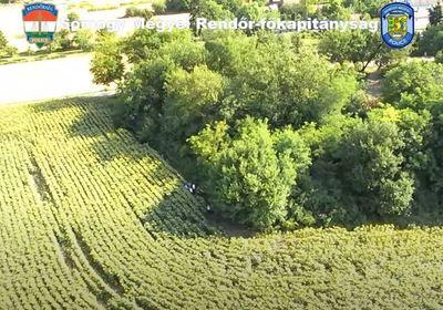 Drónfelvétel készült migránsokról a Balatonnál - videó