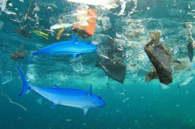 Júliustól gátat szabhatunk a műanyag okozta környezetszennyezés mértékének
