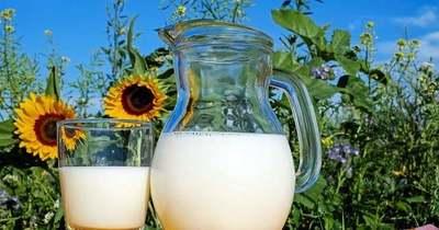 Önts tejet a kertedbe, eszméletlen lesz a hatás