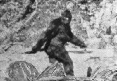 Döbbenetes felvétel látott napvilágot, senki sem tudja, hogy milyen lény látható a videón