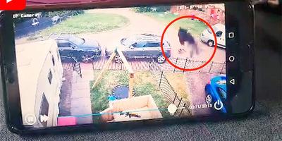 Hátborzongató felvétel - Szellemszerű lényeket rögzített a kamera: a videó vírusként terjed a neten