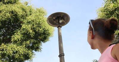 émisztő állapotban találtuk a meszesi köztéri lámpákat
