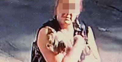Budapesten is felütötte a fejét a kutyamaffia, ezek a fajok érintettek