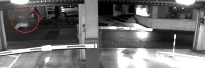 Lepellel letakarva, bevásárlókocsiban vihették el a meggyilkolt nő holttestét - videó