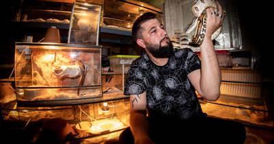 Egzotikus állatokat tart tápi otthonában Nagy Péter – 15 kígyóval, 10 madárpókkal, 22 skorpióval él együtt