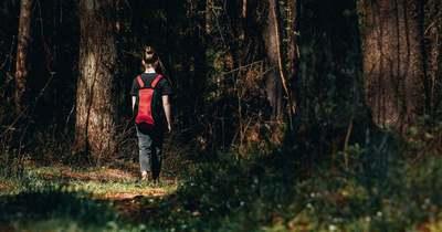 Eltűnt egy lány a szedresi otthonból, keresik a rendőrök