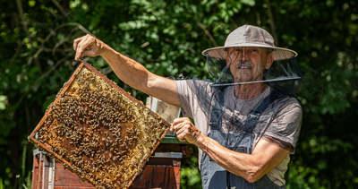 Rusvai Miklós a vírus miatt kezdett méhészkedni