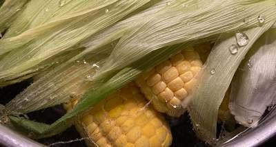 Ez az igazi főtt kukorica titka, így lesz igazán puha és édes