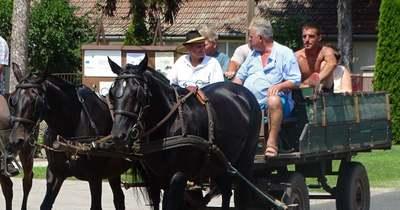 Lovas fesztivált tartottak Csikérián