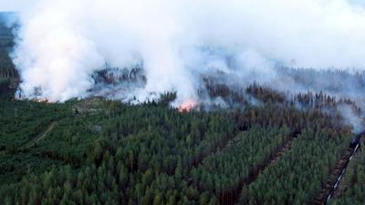 Óriási erdőtűz pusztít Finnországban - képek