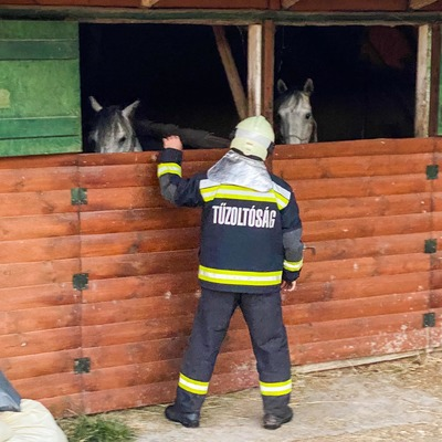 Gyújtogatás történhetett a bükki lovasparkban