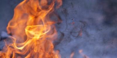 Nem lehet szavakat találni ilyen gonoszságra: szándékosan gyújtották fel a lovasparkot