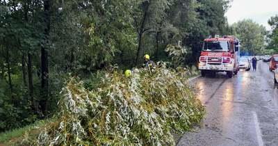 Mozgalmas hétvége volt: Gyalogosgázolás, vonatbaleset, tomboló vihar, kidőlt fák, vízi mentések