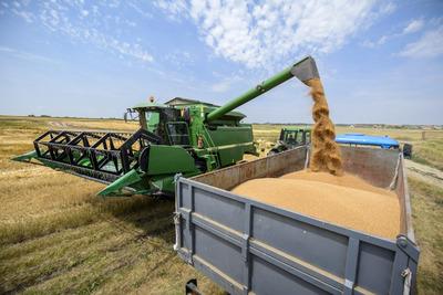 Szenzációs hír érkezett az idei aratásról