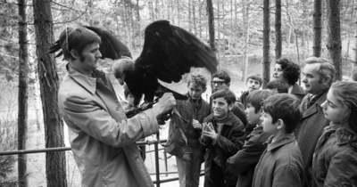 63 éves lett a Veszprémi Állatkert