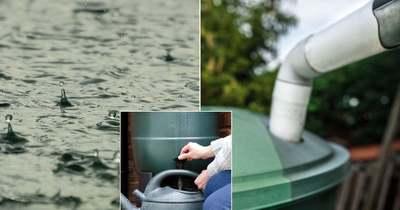 Környezetkímélő megoldás! Esővízzel öntözhetnek a rózsavölgyiek