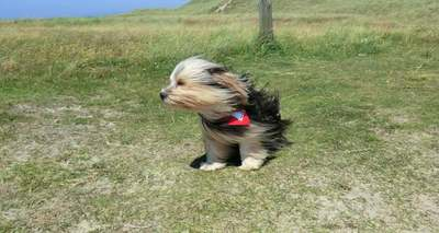 Orkán erejű szél, jégeső és felhőszakadás is jut majd nekünk csütörtökön