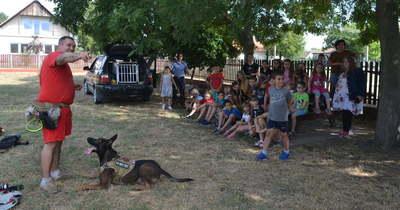 Mentőkutyás bemutatót tartott a Hetedhét táborban a Hírös Rescue Team