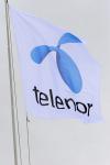 Megvan a Telenor választottja