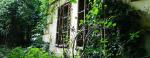 Átverések, gyilkosságok – a Fekete-kastély titkai
