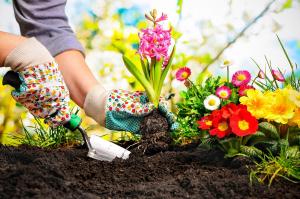 Irány a kert! Mit ültethetünk márciusban?